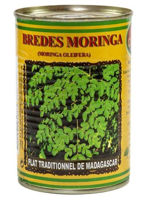 Moringa : CODAL Madagascar
