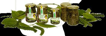 Poivre vert CODAl