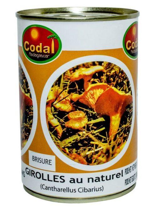 Girolle: Codal Madagascar