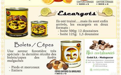 Confiture d'oranges CODAL : « must » !