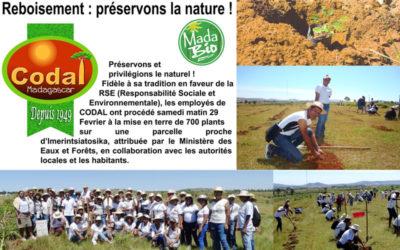 Reforestation: let's preserve nature!